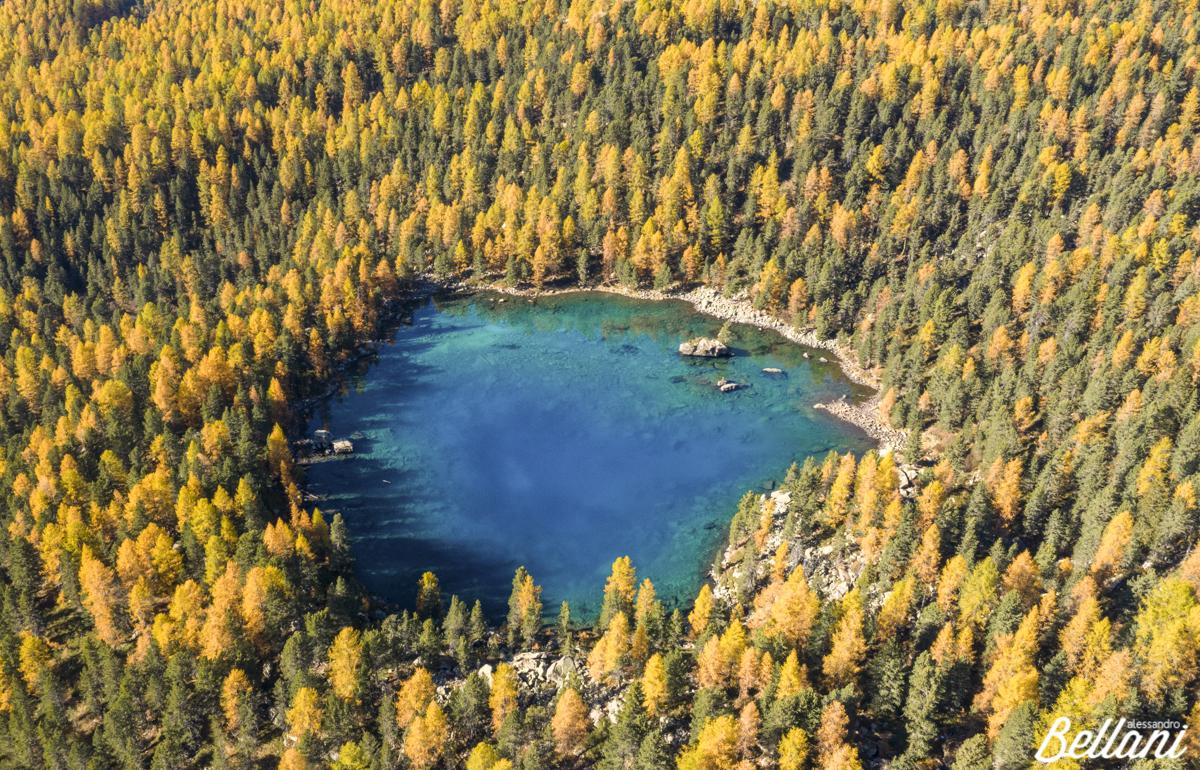 Autumn at Lake Saoseo SWITZERLAND