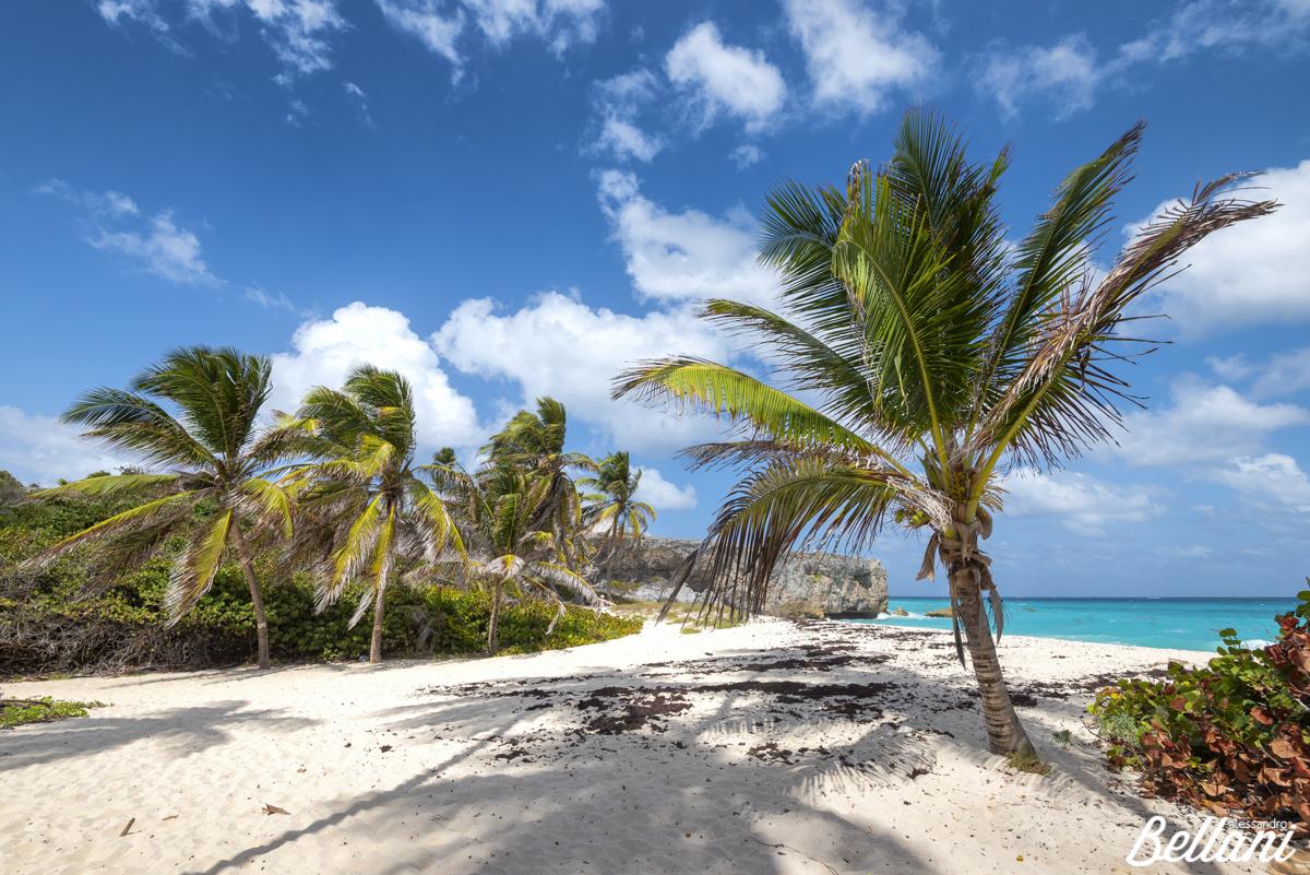 Bottom Bay beach BARBADOS ISLAND