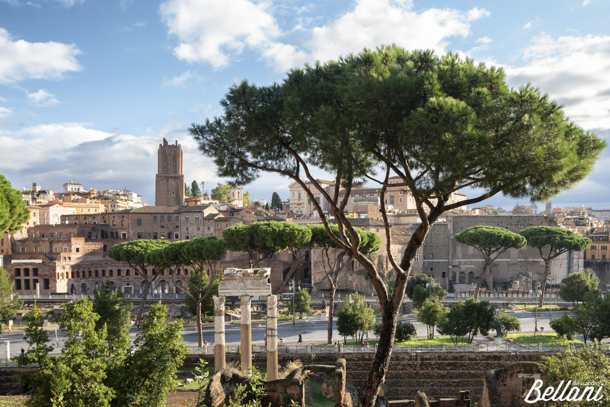 Cesare's Forum and on background markets of Traiano and tower of Milizie ROME