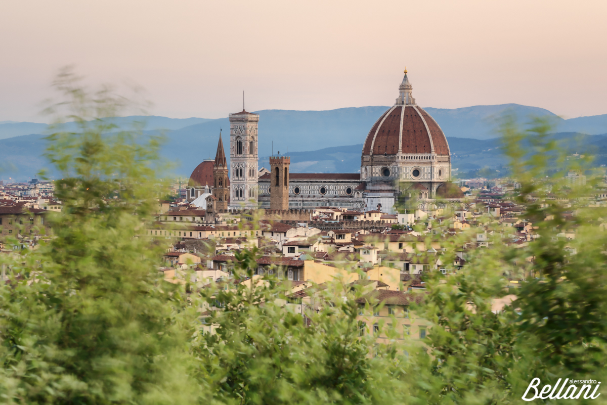 Cityscape and Cathedral of Santa Maria del Fiore and tower bell of Giotto framed from trees FLORENCE
