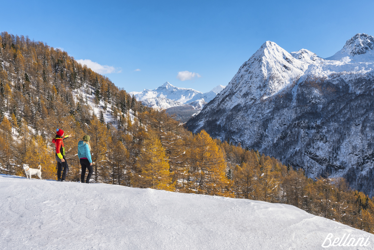 Hikers admiring the Valmalenco
