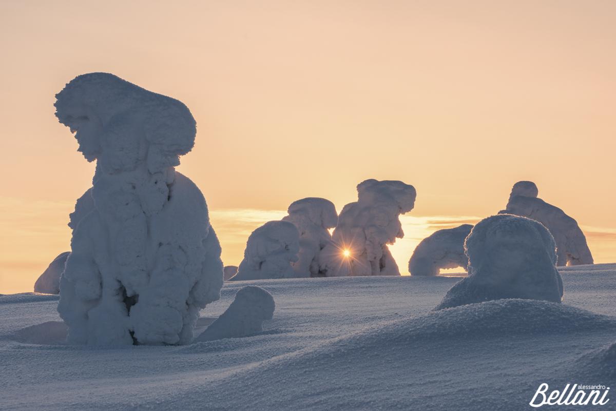 Magic winter FINLAND