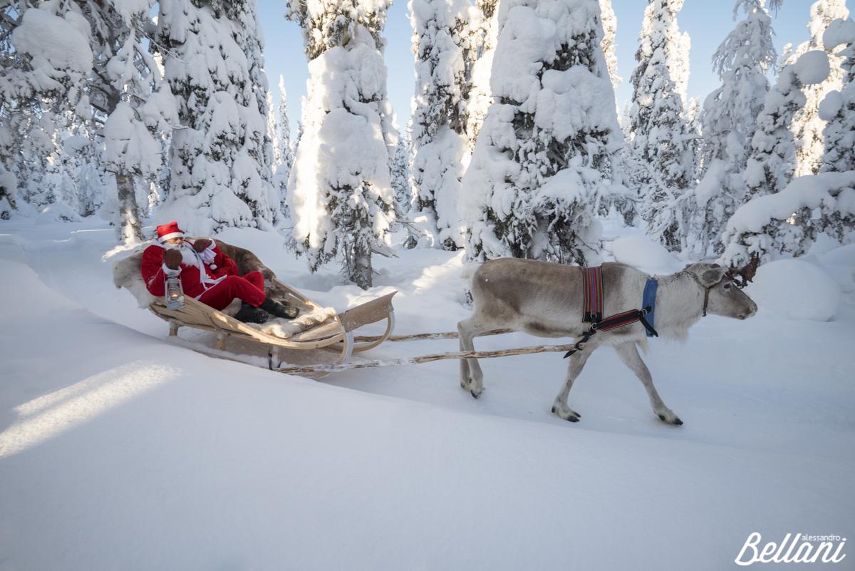 Santa Claus on the sleigh FINLAND