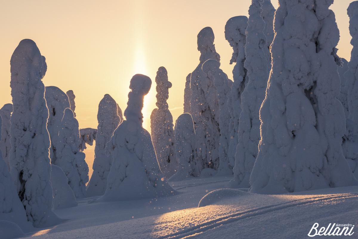 Snow figures FINLAND