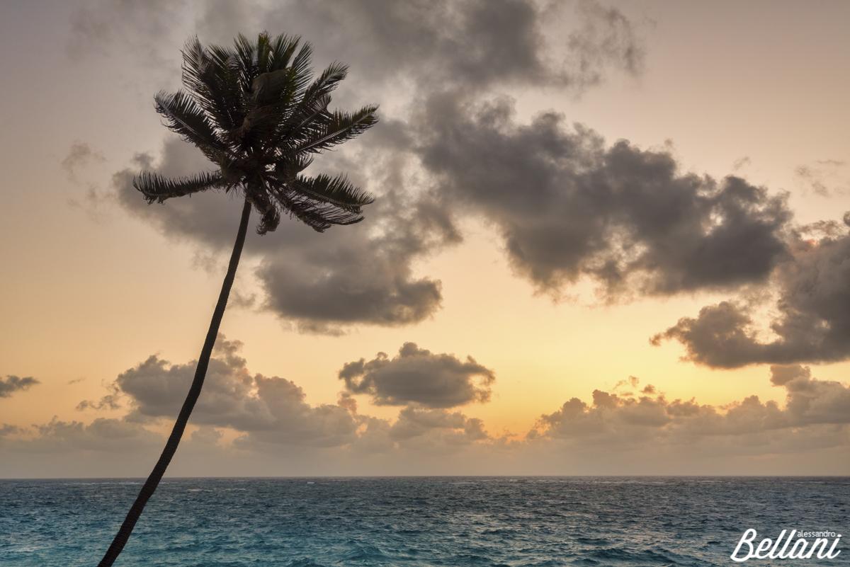 Sunrise BARBADOS ISLAND