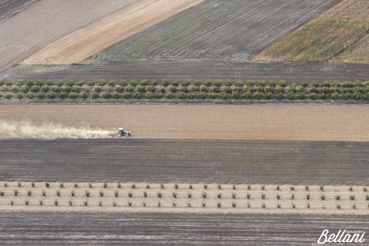 The farmer ITALY
